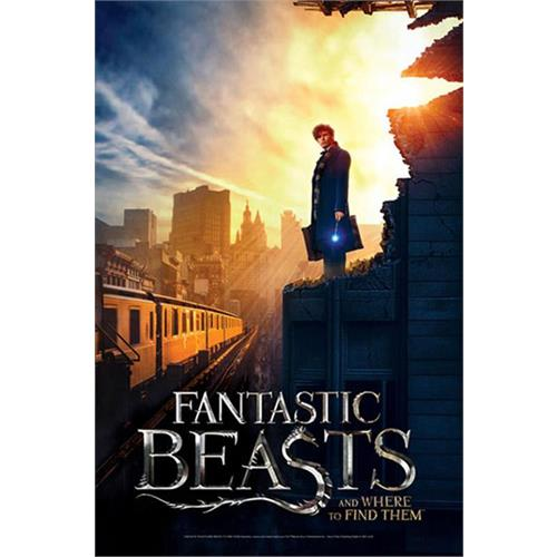 puzzle-fantastic-beast-new-york