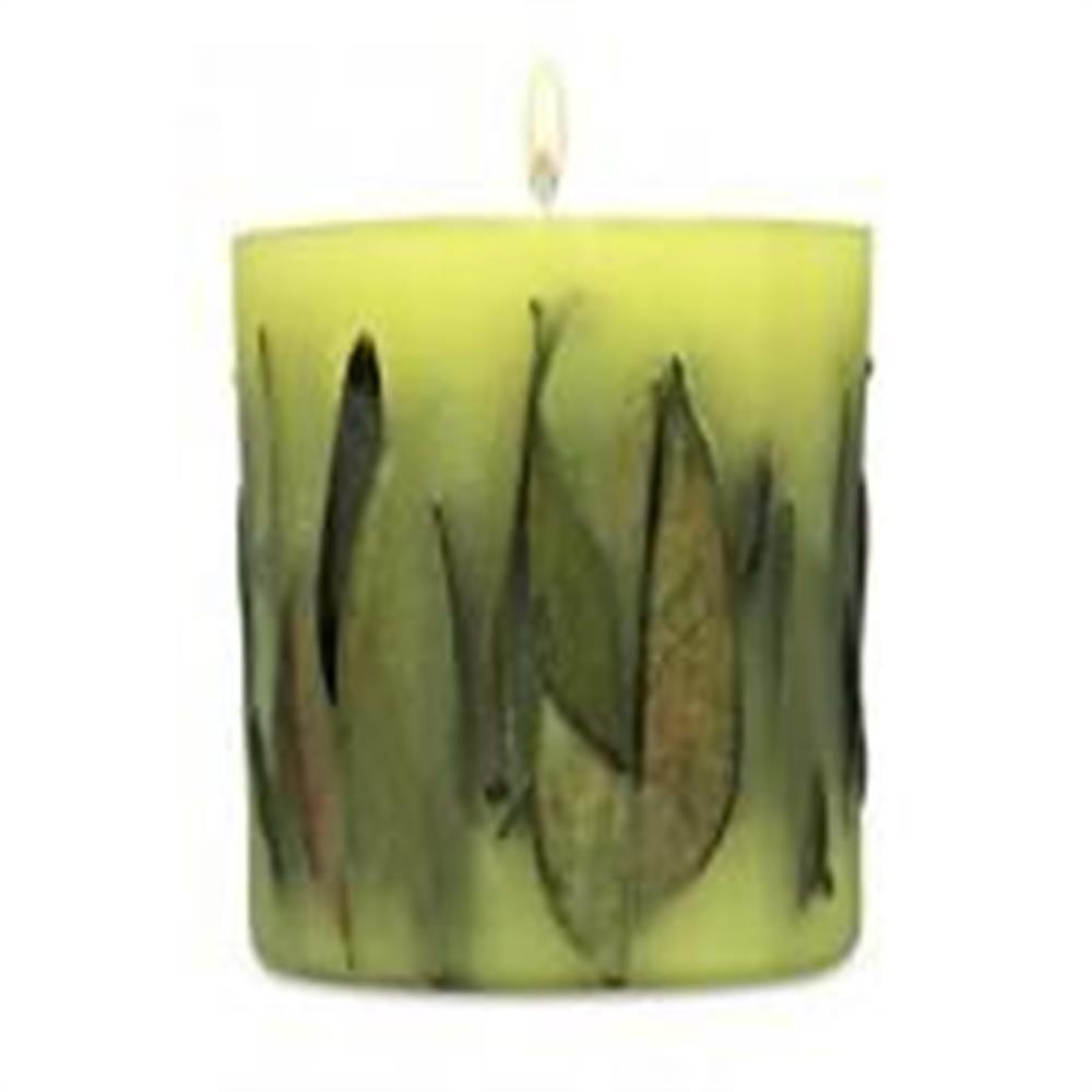 acqua-di-parma-candela-foglie-di-te_medium_image_1