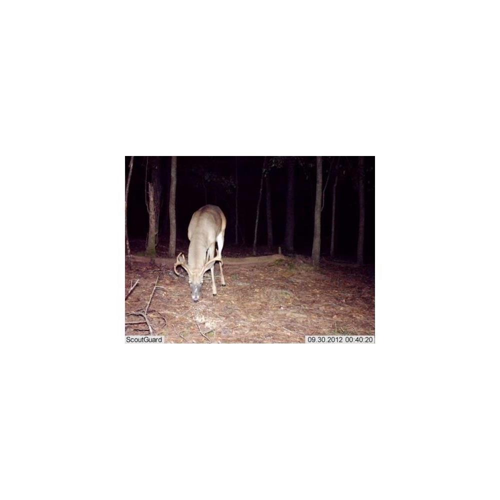 scoutguard-fototrappola-scout-guard-sg860c-a-colori-anche-di-notte_medium_image_3