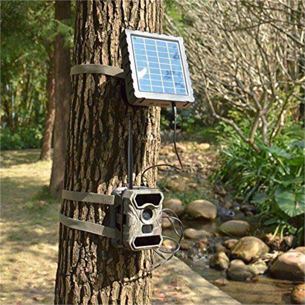 trail-camera-fototrappola-trail-camera-3g-3-5cg-hd-1080p_medium_image_5